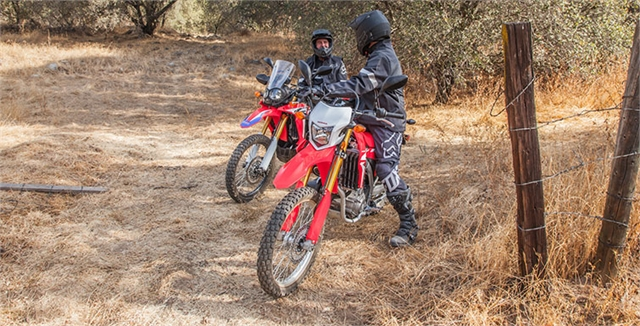 2019 Honda CRF 250L Rally at Wild West Motoplex