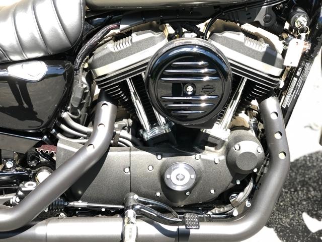 2019 Harley-Davidson Sportster Iron 883™ at Bluegrass Harley Davidson, Louisville, KY 40299