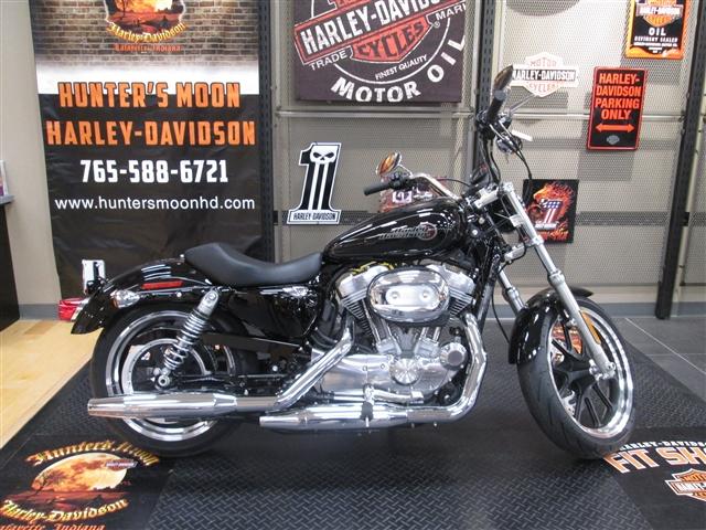 2019 Harley-Davidson Sportster SuperLow - Under $10k at Hunter's Moon Harley-Davidson®, Lafayette, IN 47905