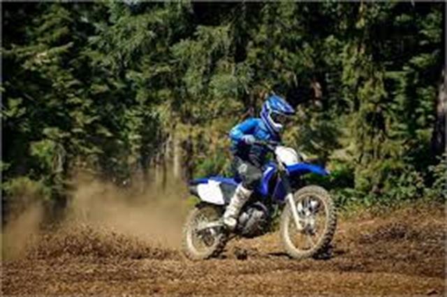 2020 Yamaha TT-R 230 at Youngblood RV & Powersports Springfield Missouri - Ozark MO