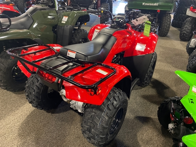 2020 Honda FourTrax Recon ES at Dale's Fun Center, Victoria, TX 77904