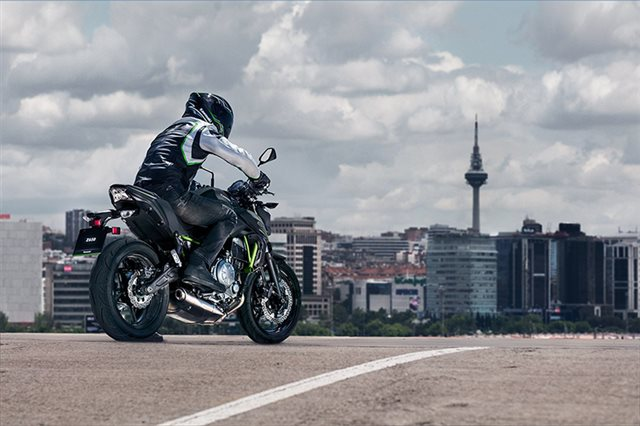 2019 Kawasaki Z650 Base at Ehlerding Motorsports