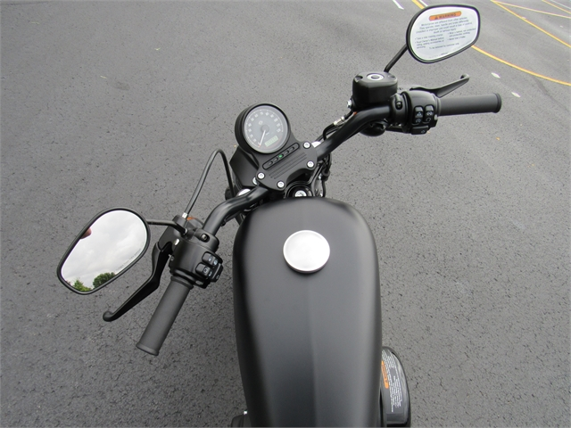2021 Harley-Davidson XL883N at Conrad's Harley-Davidson