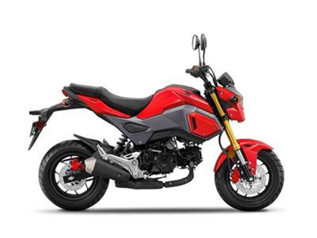 2018 Honda Grom Base at Seminole PowerSports North, Eustis, FL 32726