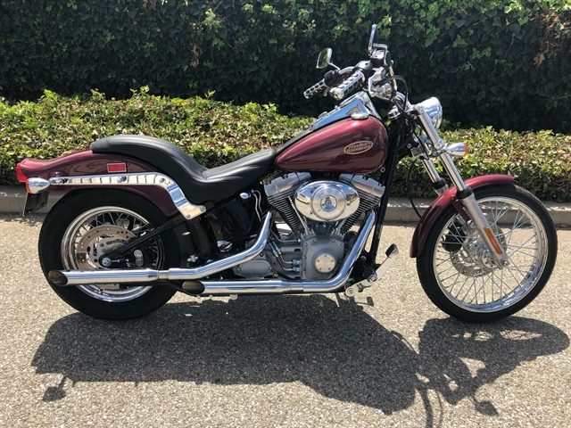 2002 HARLEY FXST at Ventura Harley-Davidson