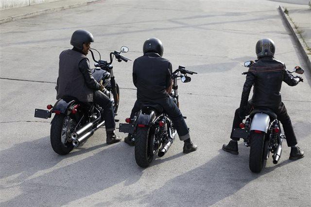 2020 Harley-Davidson Softail Street Bob at Columbia Powersports Supercenter