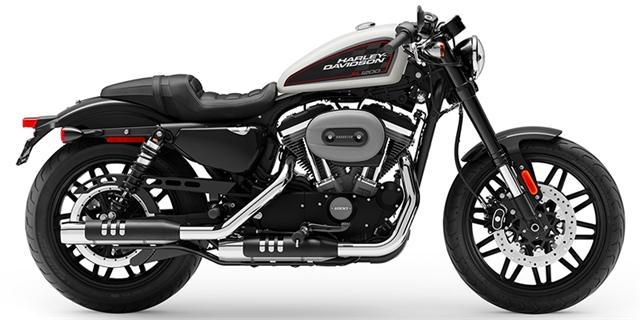 2019 Harley-Davidson Sportster Roadster at Thunder Harley-Davidson