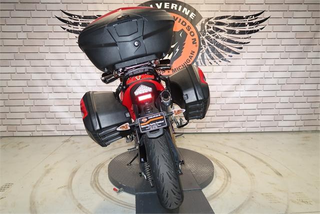 2012 Triumph Tiger 1050 SE ABS at Wolverine Harley-Davidson