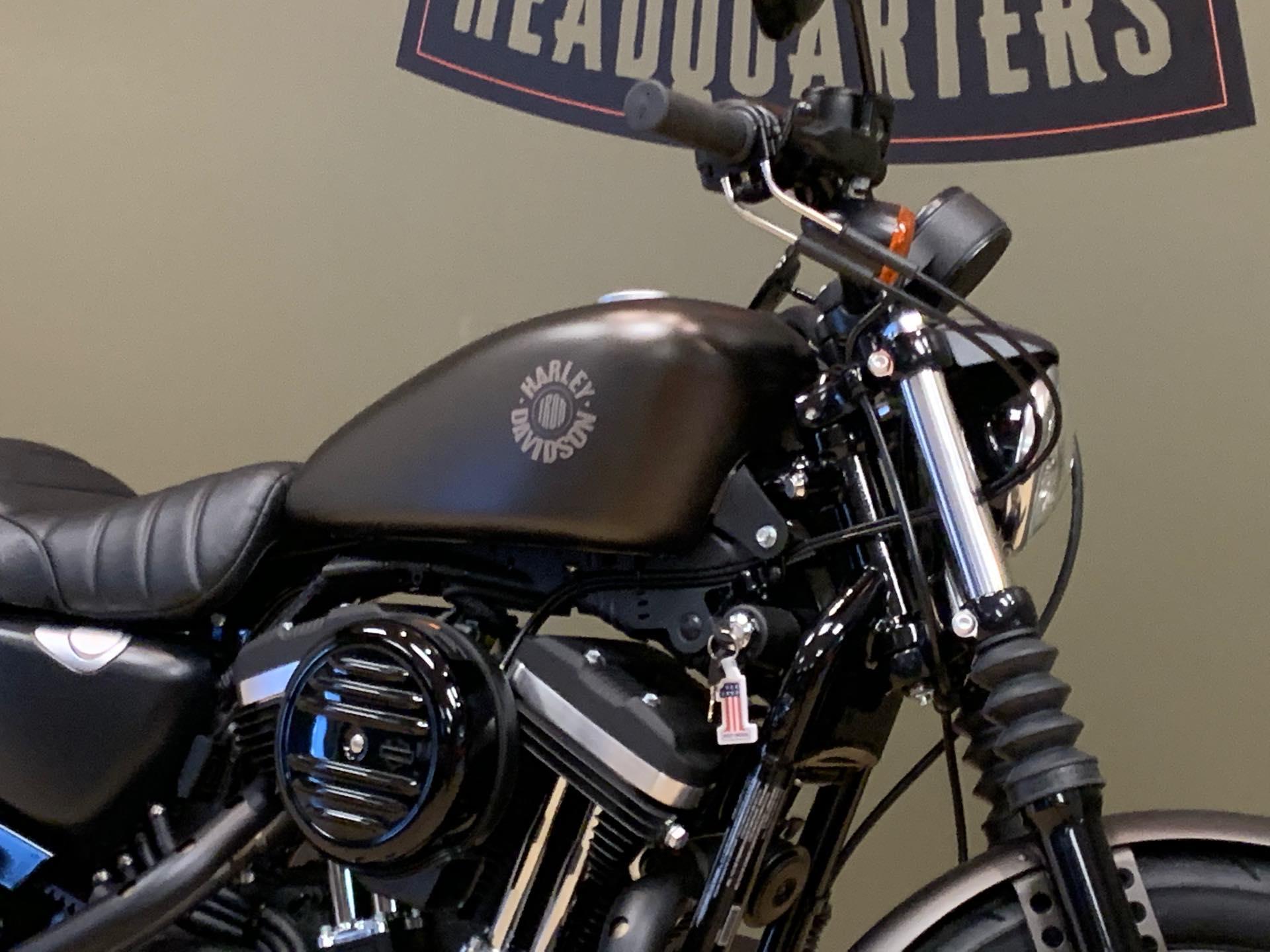 2021 HARLEY-DAVIDSON XL883N at Loess Hills Harley-Davidson