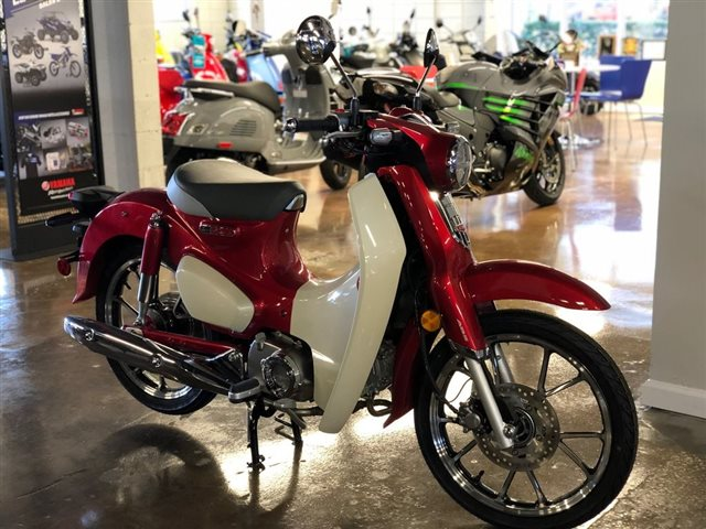 2021 Honda Super Cub C125 C125 ABS at Powersports St. Augustine