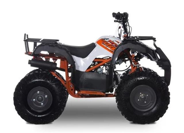2020 KAYO AT125-W at Got Gear Motorsports