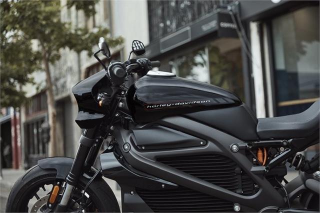 2020 Harley-Davidson Electric LiveWire at Southside Harley-Davidson