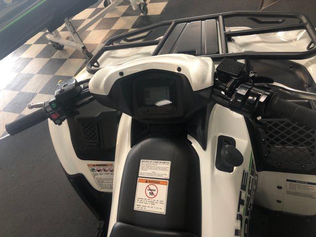 2019 Kawasaki Brute Force 750 4x4i EPS at Jacksonville Powersports, Jacksonville, FL 32225
