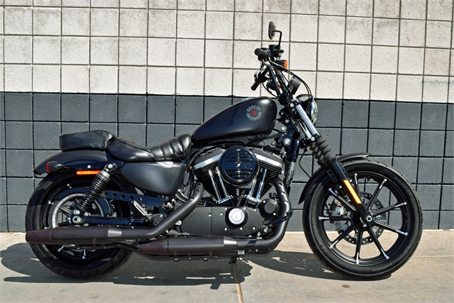 2019 Harley-Davidson Sportster Iron 883 at Buddy Stubbs Arizona Harley-Davidson