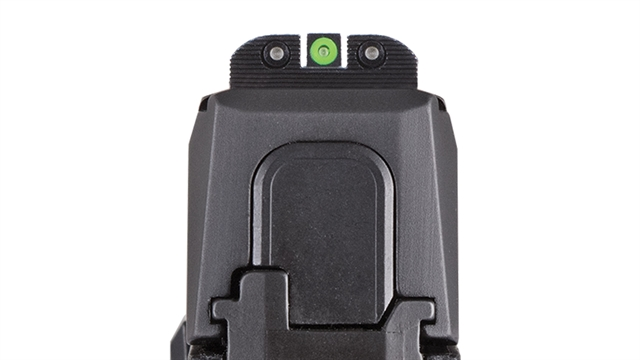 2020 Sig Sauer P365 at Harsh Outdoors, Eaton, CO 80615