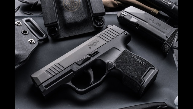2021 Sig Sauer P365 at Harsh Outdoors, Eaton, CO 80615