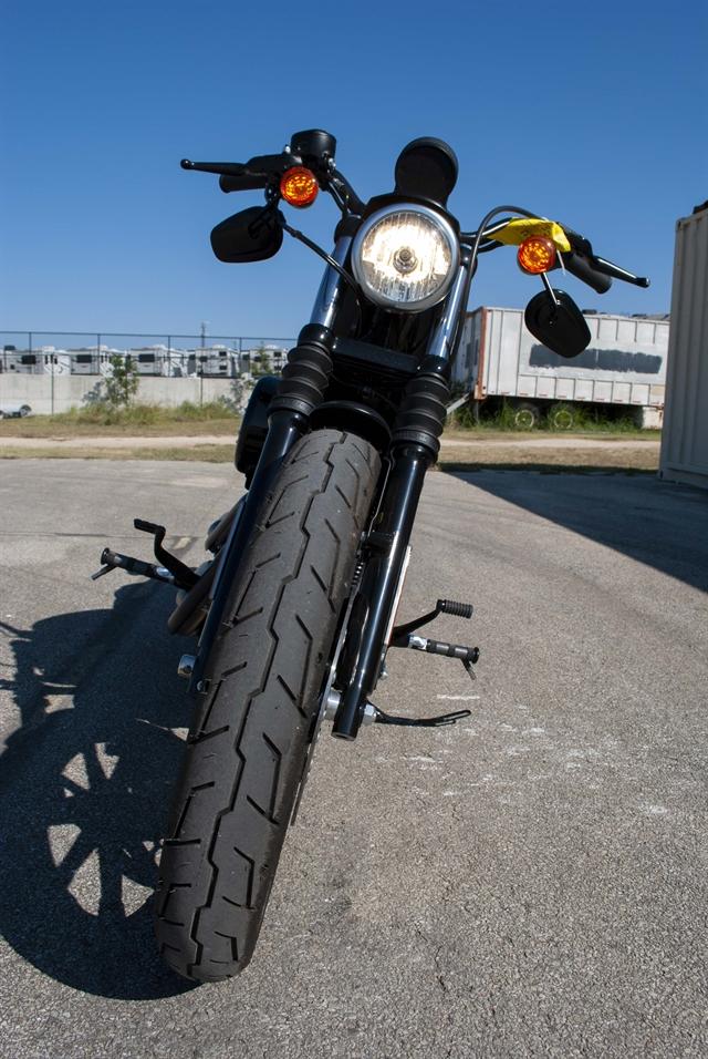 2019 Harley-Davidson Sportster® Iron 883™ at Javelina Harley-Davidson