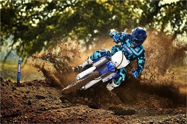 2019 Yamaha YZ 250 at Yamaha Triumph KTM of Camp Hill, Camp Hill, PA 17011