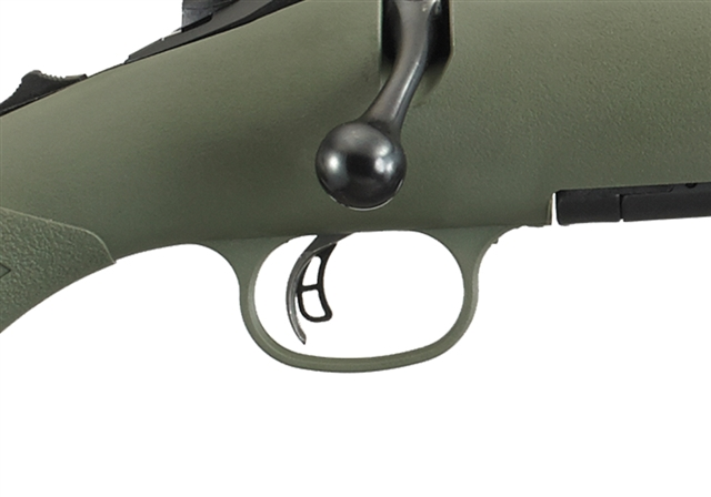 2019 Ruger American® Rifle Predator Mossy Green Synthetic at Harsh Outdoors, Eaton, CO 80615