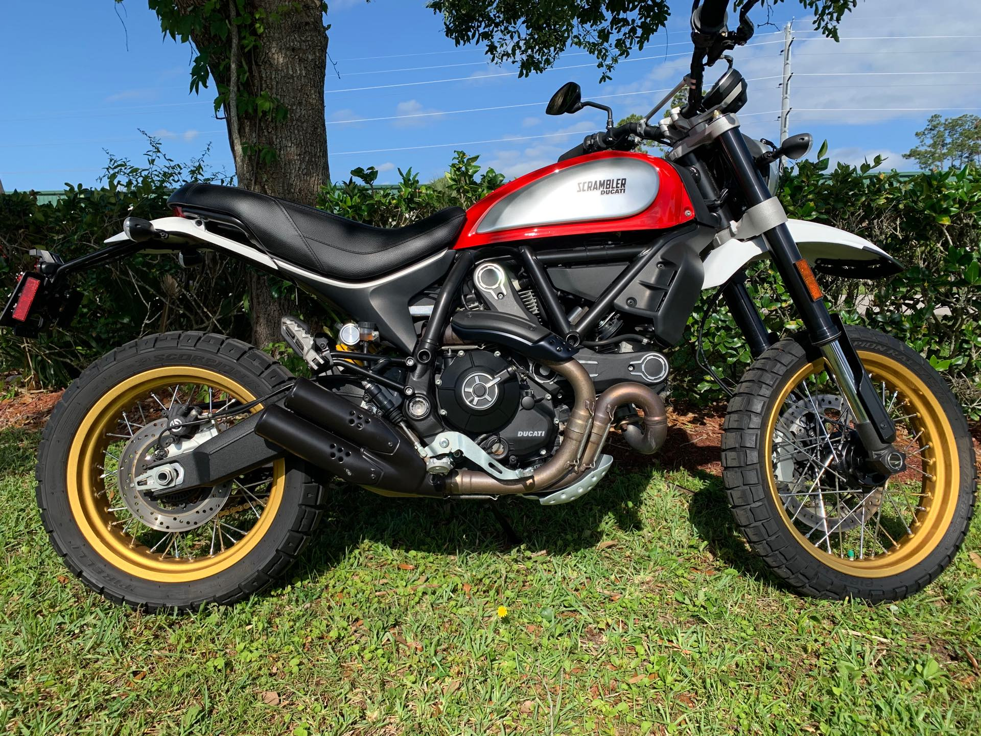 2017 Ducati #DESERTSLED Icon at Powersports St. Augustine
