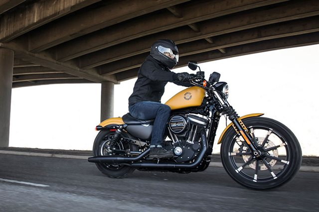 2019 Harley-Davidson Sportster Iron 883 at Garden State Harley-Davidson