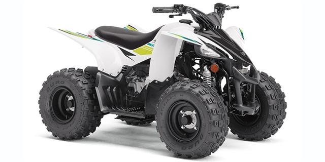 2022 Yamaha YFZ 50 at Sky Powersports Port Richey