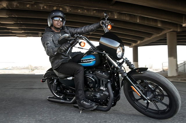2019 Harley-Davidson Sportster Iron 1200 at Harley-Davidson of Fort Wayne, Fort Wayne, IN 46804