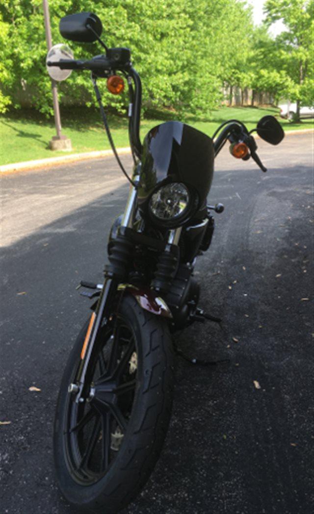 2019 Harley-Davidson Sportster Iron 1200NS at Bluegrass Harley Davidson, Louisville, KY 40299