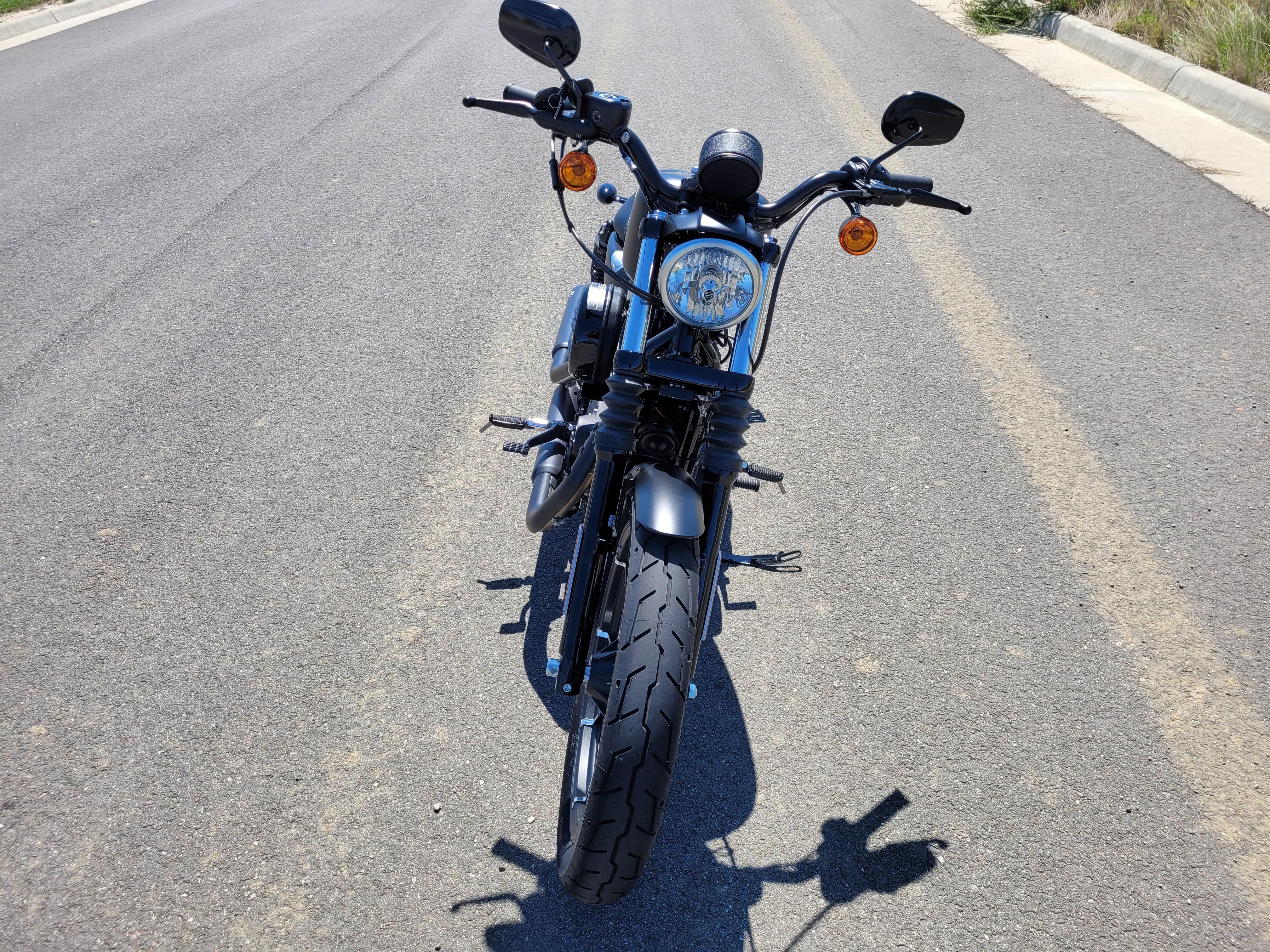 2019 Harley-Davidson Sportster Iron 883 at Richmond Harley-Davidson