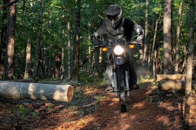 2021 Yamaha XT 250 at ATVs and More