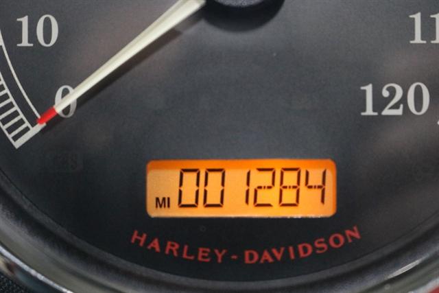 2016 Harley-Davidson Softail Fat Boy at Texas Harley