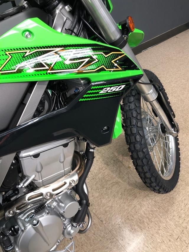 2020 Kawasaki KLX 250 at Sloans Motorcycle ATV, Murfreesboro, TN, 37129