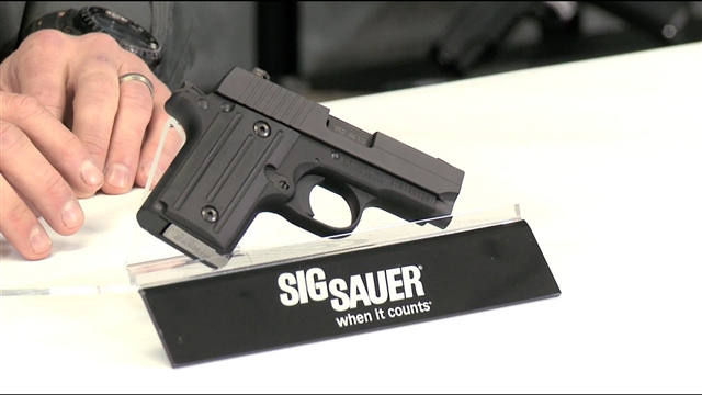 2018 Sig Sauer P238 at Harsh Outdoors, Eaton, CO 80615