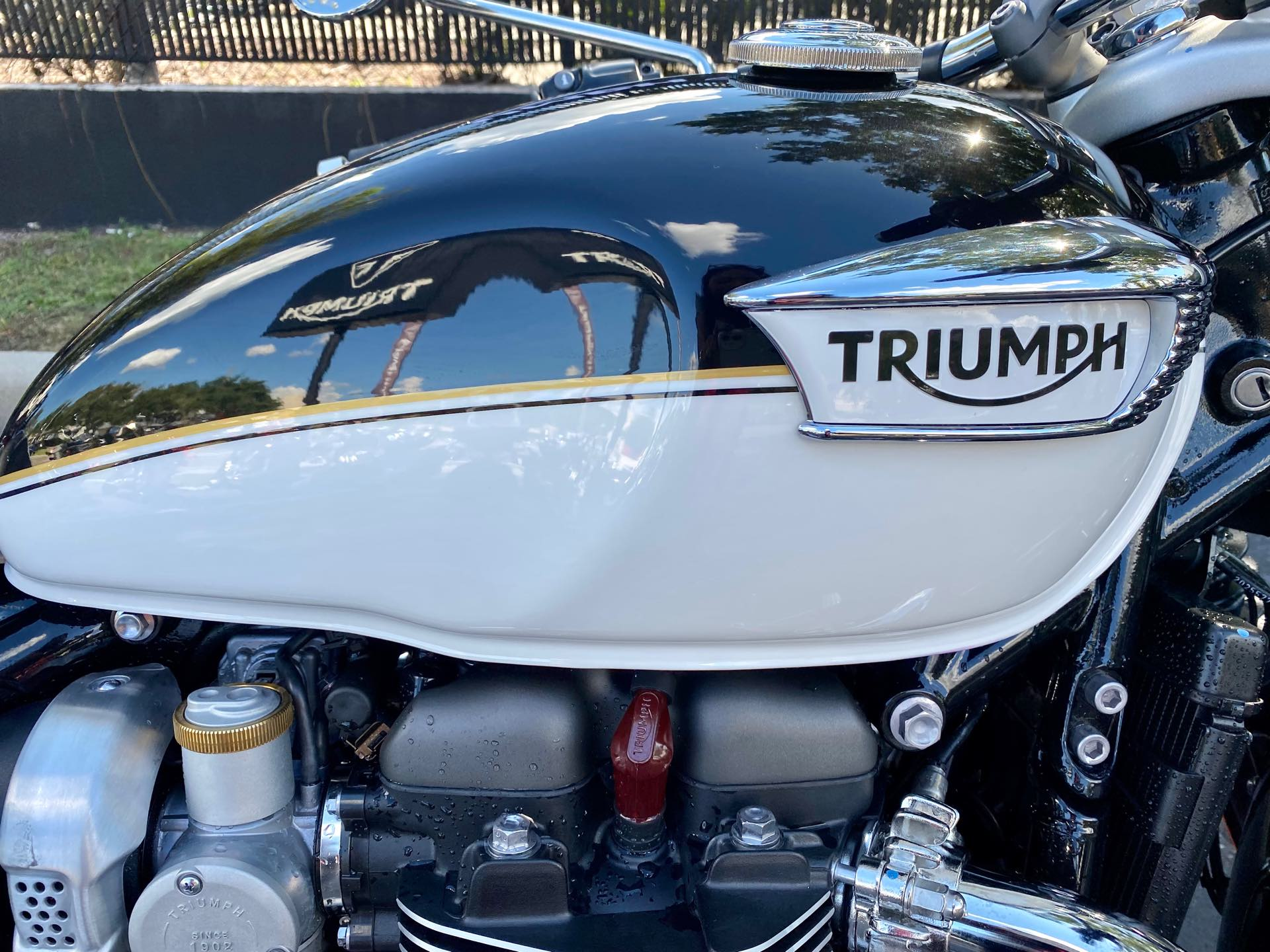 2022 Triumph Bonneville Speedmaster Base at Tampa Triumph, Tampa, FL 33614
