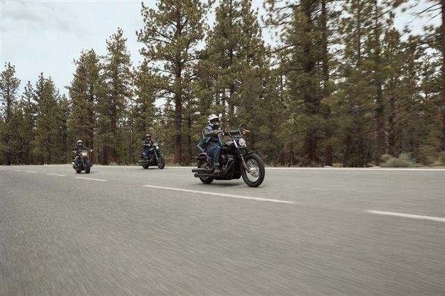 2020 Harley-Davidson Softail Fat Bob 114 at Texoma Harley-Davidson