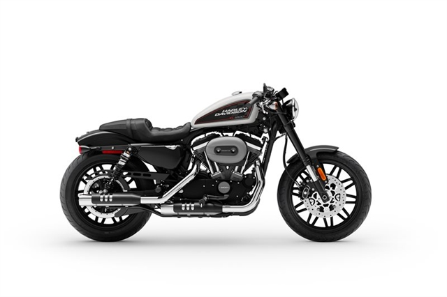 2020 Harley-Davidson Sportster Roadster at Zips 45th Parallel Harley-Davidson