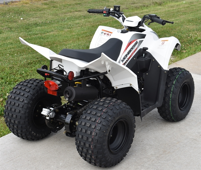2019 KYMCO Mongoose 90S at Lincoln Power Sports, Moscow Mills, MO 63362