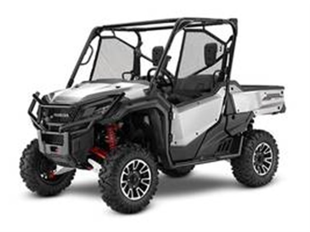 2019 Honda Pioneer 1000 LE at Got Gear Motorsports