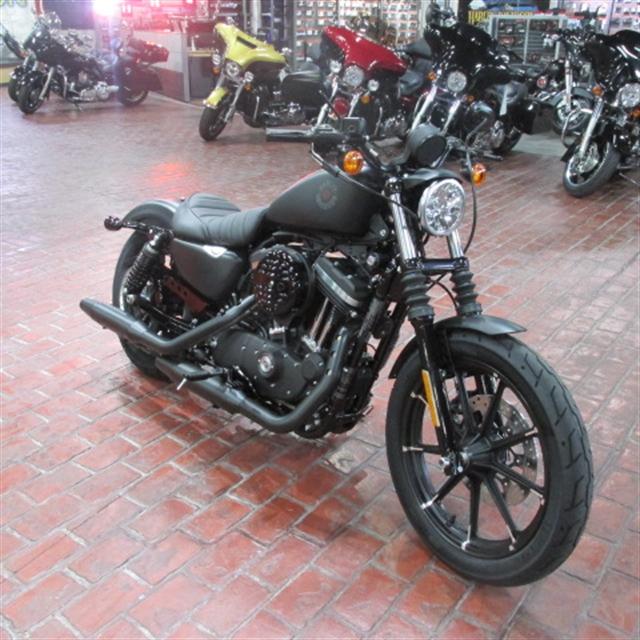 2020 Harley-Davidson XL883N at Bumpus H-D of Memphis
