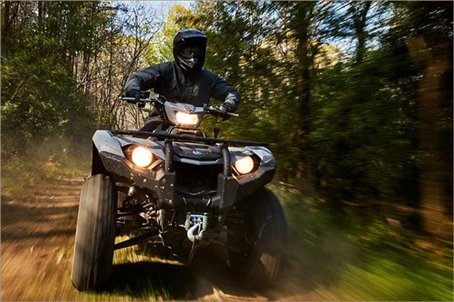 2019 Yamaha Kodiak 450 EPS at Yamaha Triumph KTM of Camp Hill, Camp Hill, PA 17011