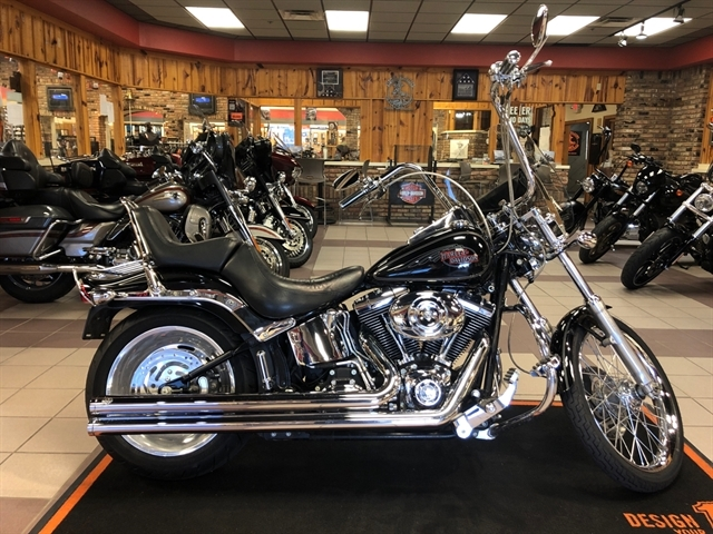 2007 Harley-Davidson Softail Custom at High Plains Harley-Davidson, Clovis, NM 88101