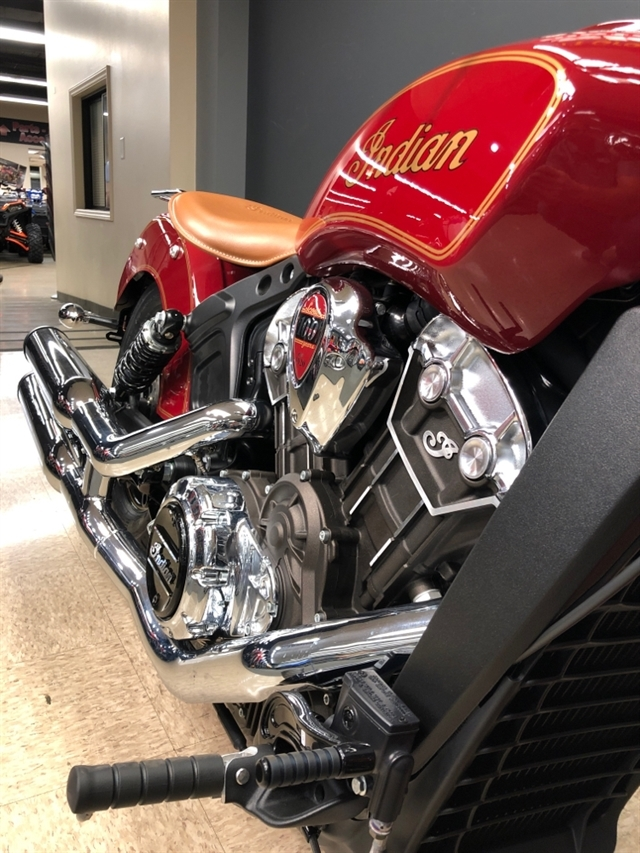 2020 Indian SCOUT 100TH ANNIVERSARY N20MSE00AW at Sloans Motorcycle ATV, Murfreesboro, TN, 37129