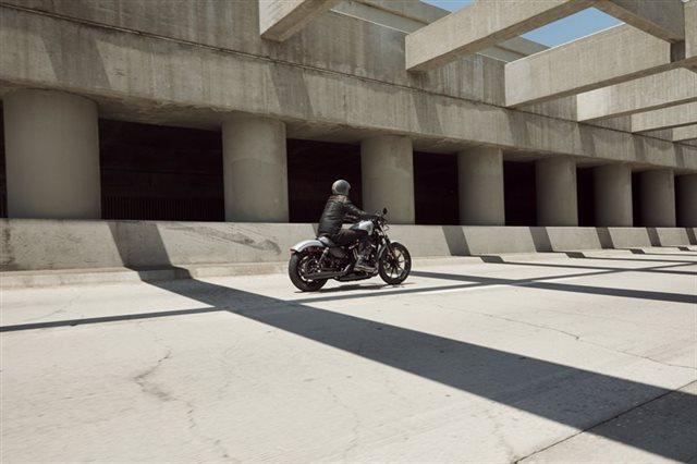 2020 Harley-Davidson Sportster Iron 883 at Southside Harley-Davidson