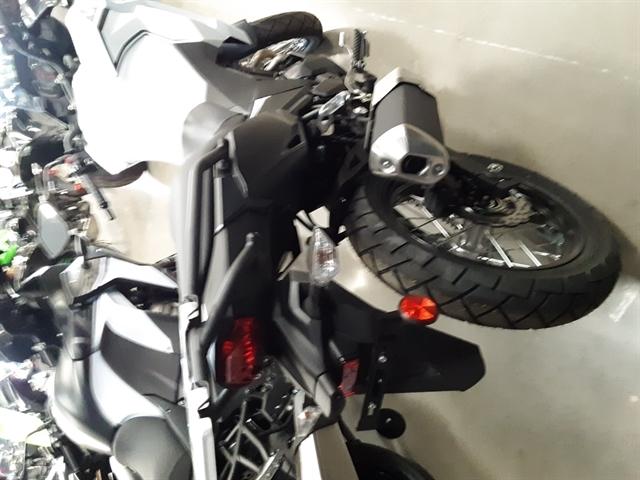2020 Kawasaki Versys-X 300 at Youngblood RV & Powersports Springfield Missouri - Ozark MO