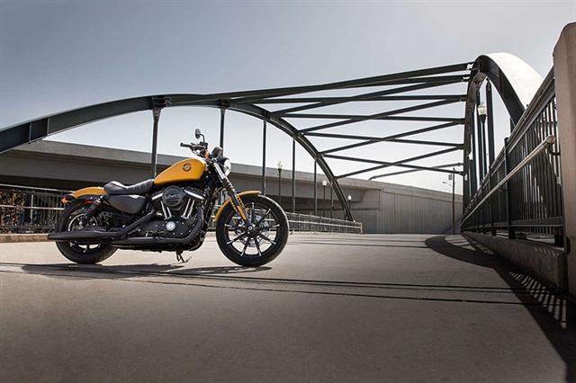2019 Harley-Davidson Sportster Iron 883 at Harley-Davidson of Macon