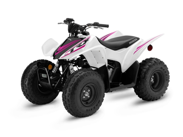 2022 Honda TRX90X at Martin Moto