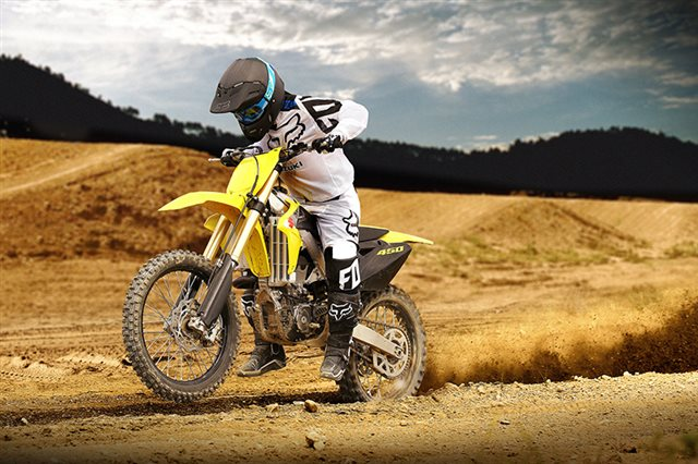 2017 Suzuki RM-Z 450 at ATVs and More