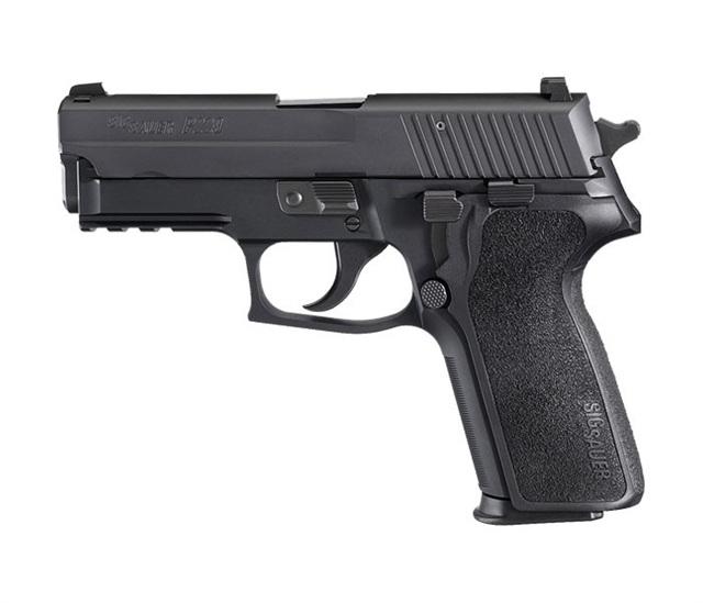 2019 Sig Sauer P229 at Harsh Outdoors, Eaton, CO 80615