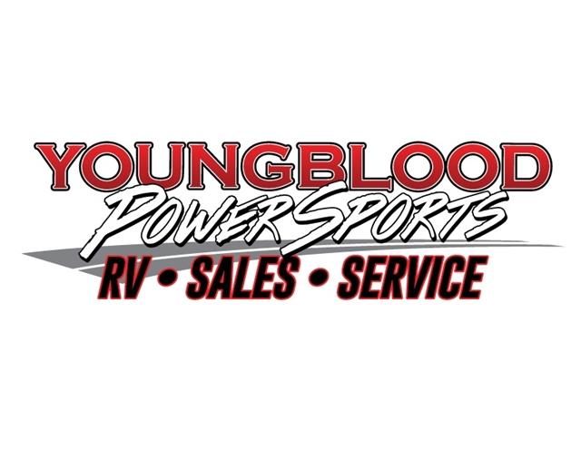 2019 Triumph Bonneville T100 Black at Youngblood RV & Powersports Springfield Missouri - Ozark MO