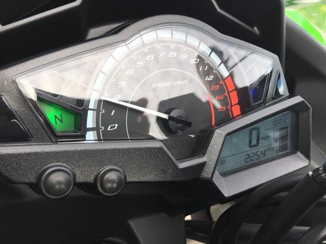 2016 Kawasaki Ninja 300 ABS at Fort Myers